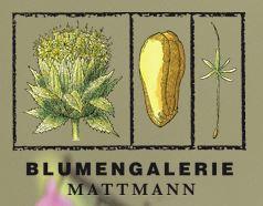 Logo Blumengalerie Mattmann